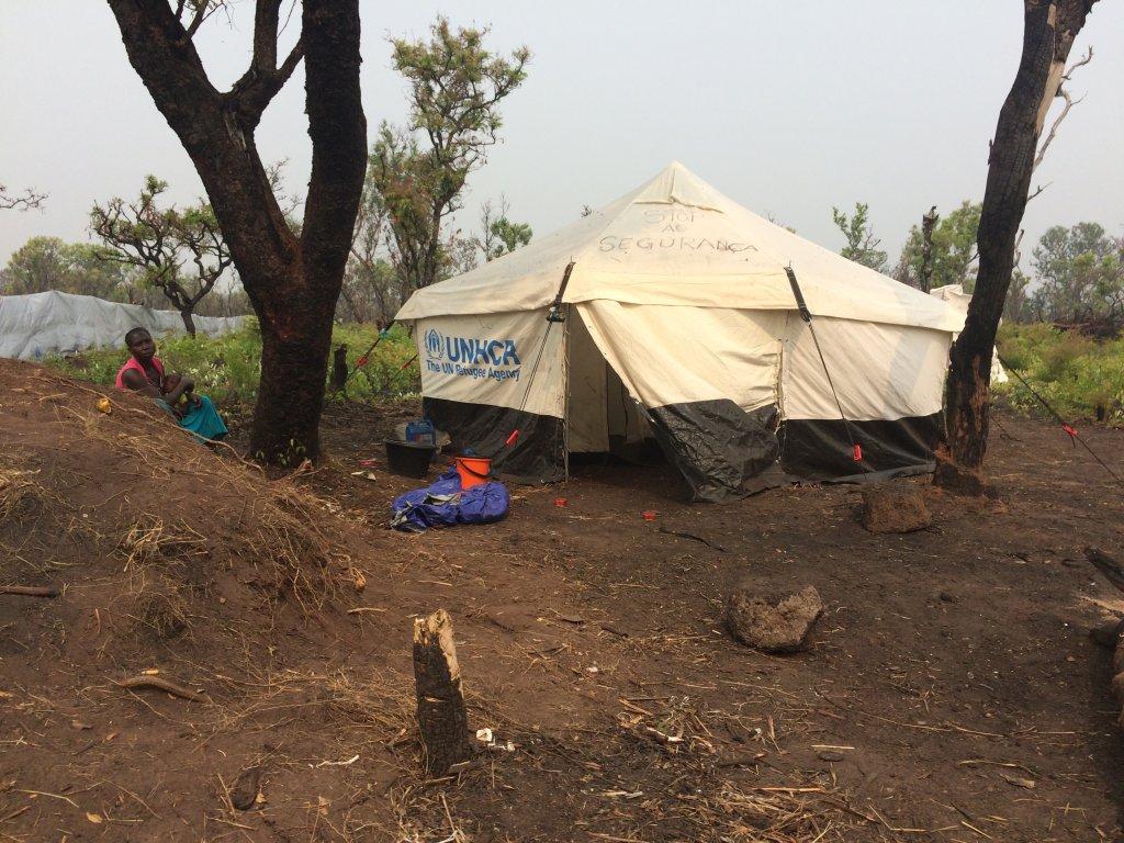 RFI/Sonia Rolley |Le camp de Lovua situé à une centaine de kilomètres de la frontière congolaise en territoire angolais doit à terme accueillir quelque 3300 réfugiés congolais