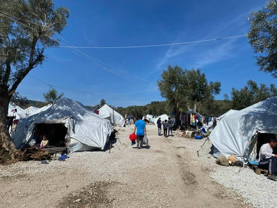 مهاجرون يقيمون في أرض للزيتون. المصدر: غياث الجندي