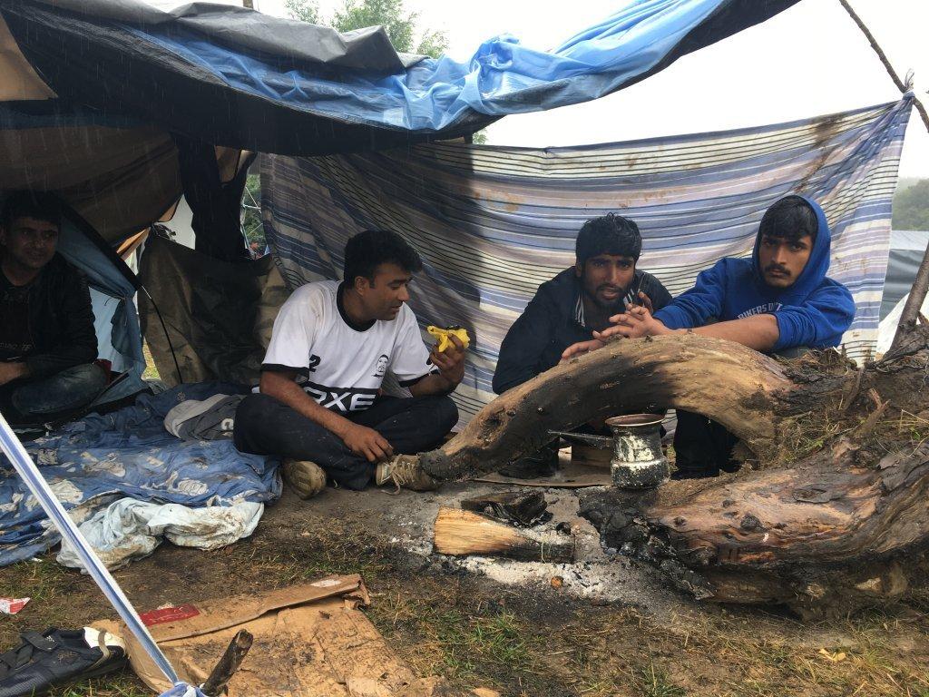 اردوگاه موقت مهاجران در شمال بوسنی. عکس از: مهاجر نیوز.