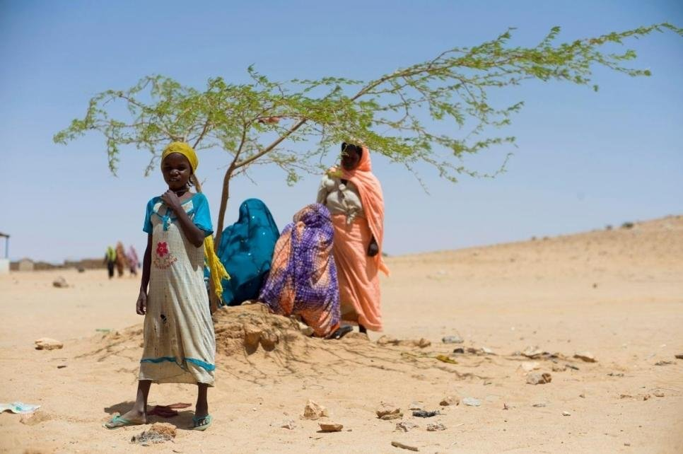 ©HCR/Corentin Fohlen |Des femmes réfugiées soudanaises se reposent à l'ombre d'un arbre au camp de réfugiés, dans l'est du Tchad. (image d'illustration)