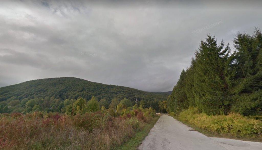 Des coupes claires ont été constatées sur la montagne Plješivica, une région forestière protégée, à la frontière entre la Croatie et la Bosnie. Crédit : Google Street View