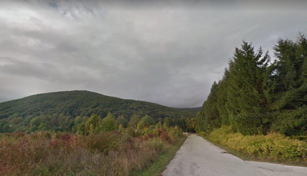 در هفته های اخیر دولت کرواسیا یک کارزار قطع جنگل را در نواحی شرق کشور به  راه انداخته تا ساحه دید و کنترول در مناطق جنگلی مرزی در لش ویستا را توسعه دهد. عکس از گوگل ستریت ویو