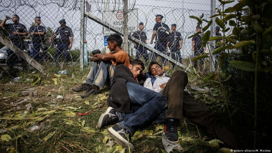 A group of young men sleep by Hungary's barbed wire border fence, erected along the border with Serbia Photo: picture-alliance/M. Moskwa