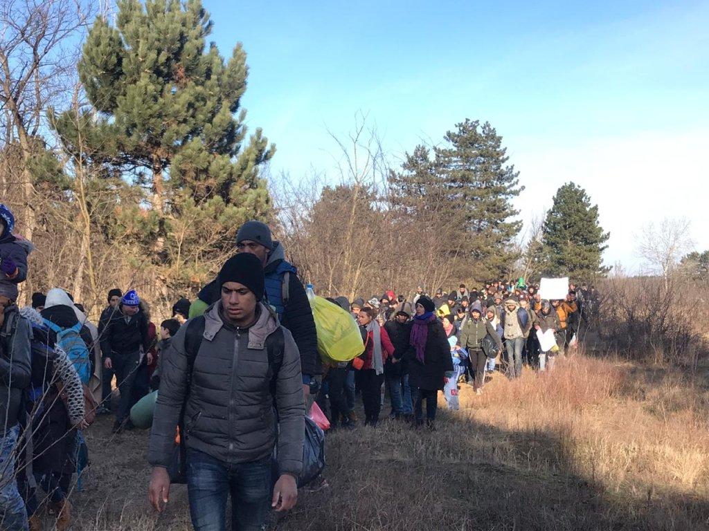 قافلة المهاجرين باتجاه الحدود الصربية المجرية. الحقوق محفوظة