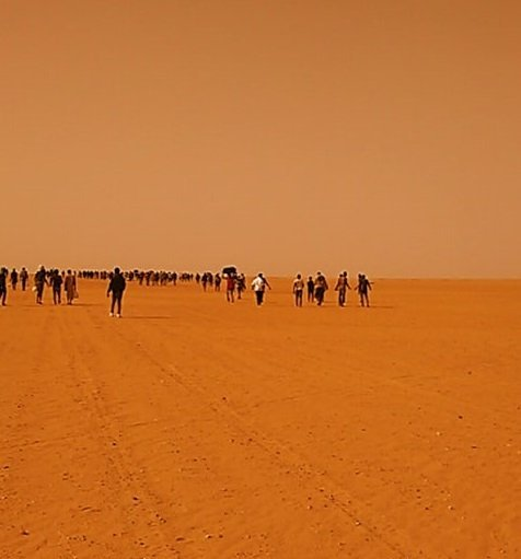 Migrants abandoned in the Sahara desert | Photo: Sylla Ibrahima Sory