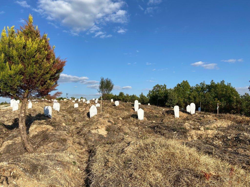 Le cimetière de migrants anonymes de Sidiro, à la frontière turque. Crédit : InfoMigrants