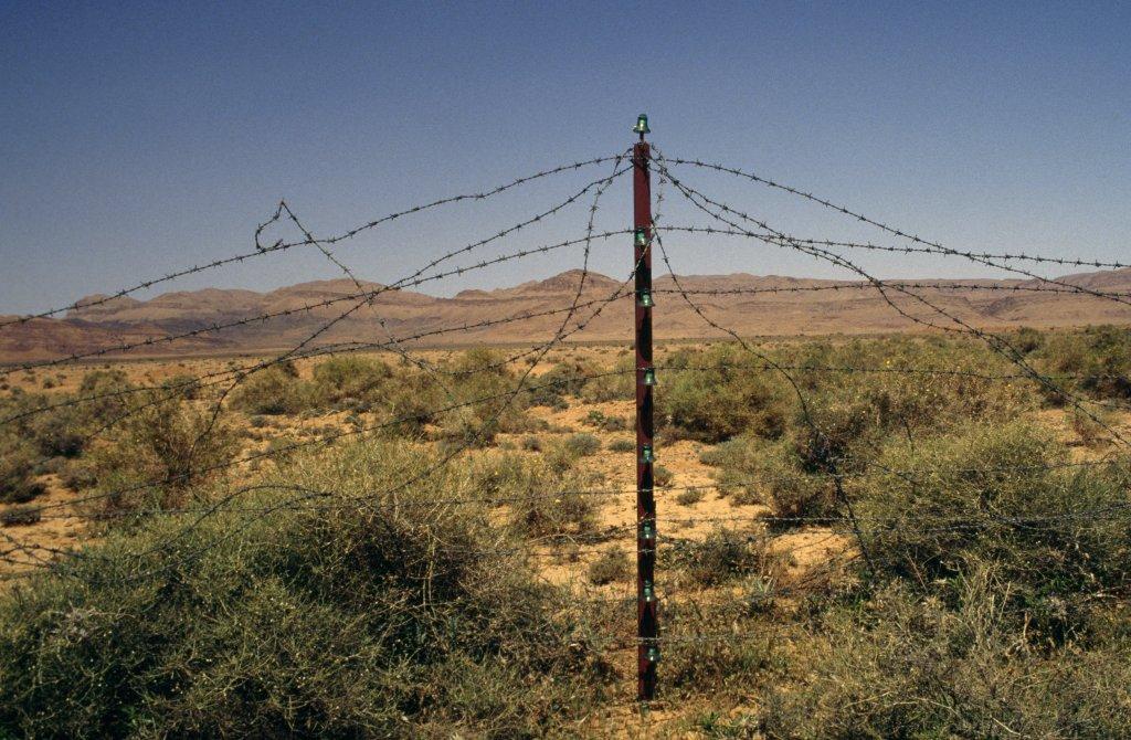 Des barbelés à la frontière entre le Maroc et l'Algérie, dans la région de Béchar. Crédit : DR