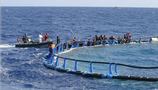 File photo of migrants stranded on a tuna pen in 2008 | Source: Times of Malta
