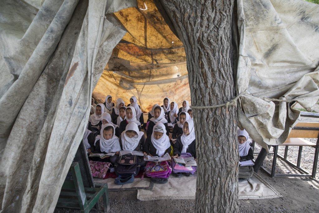 مدرسة في ظل  شجرة