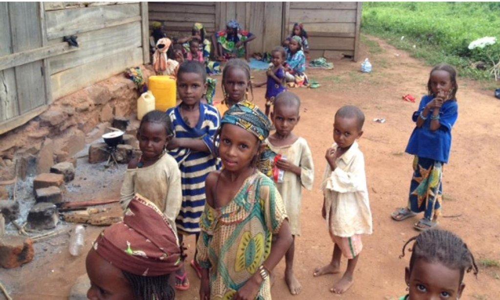 اذاعة فرنسا الدولية |وفقًا لليونيسيف ، هناك طفلان من بين كل خمسة أطفال محرومون من المساعدة الإنسانية في جمهورية أفريقيا الوسطى