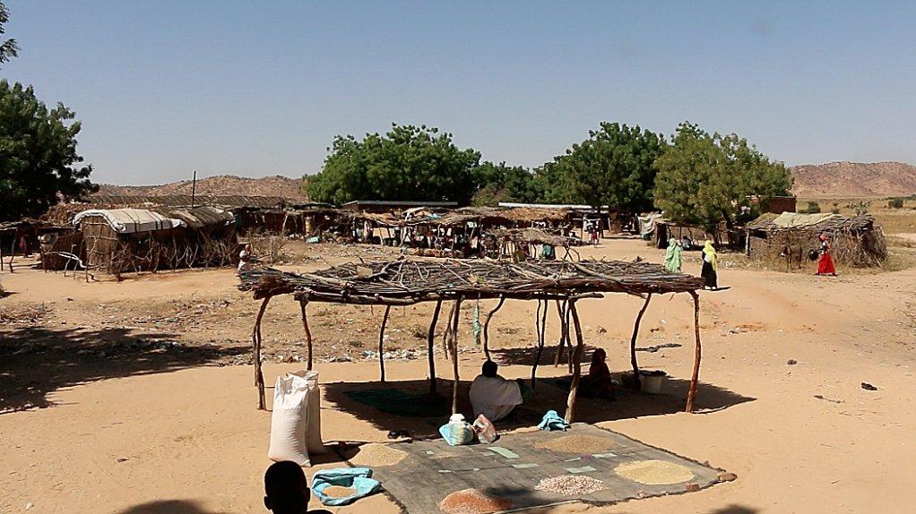 RFI/Aurélie Bazzara |Les étales du marché de Djabal sont presque vides, Goz Beïda, décembre 2018.