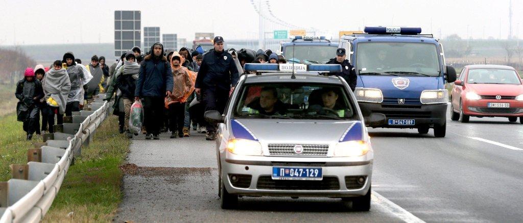 ANSA / مهاجرون يسيرون برعاية الشرطة على الطريق السريع بلغراد - زغرب بالقرب من بيشينتشي. المصدر: إي بي إيه / كوتشا سوليمانوفيتش.
