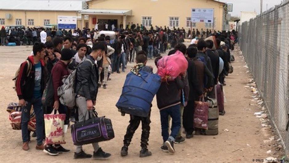 شماری از مهاجران افغان مدعی اند که آنان را مرزبانان ایرانی به دریای هریرود انداخته اند.