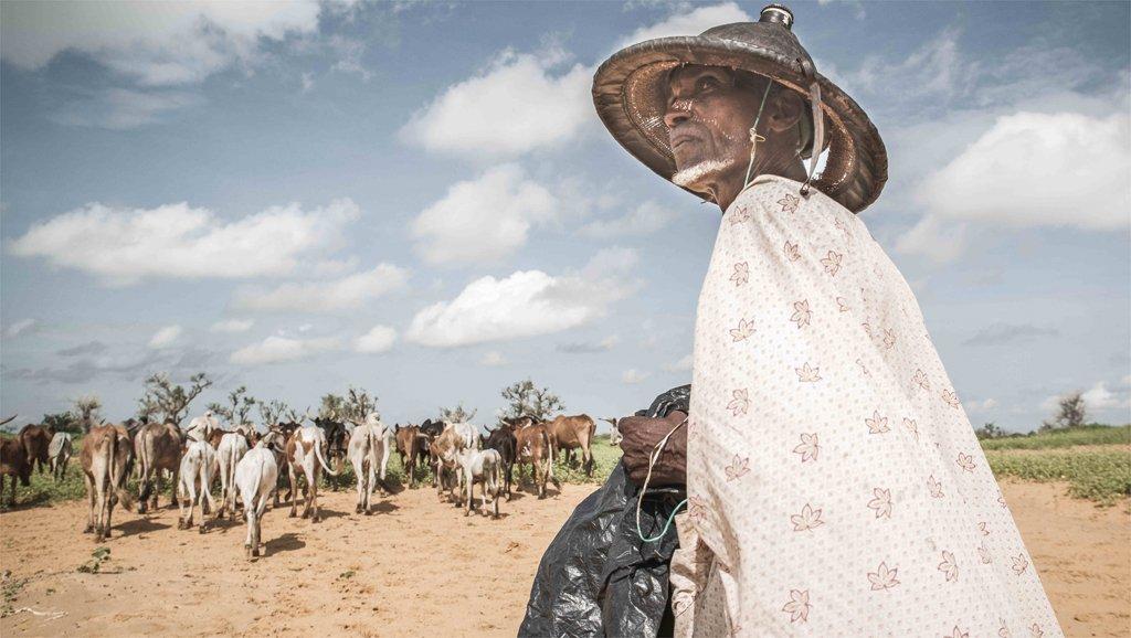 © Samuel Turpin/HCCS |Un agriculteur malien de la région de Mopti. Bon nombre de déplacés maliens ont perdu leur seule activité rémunératrice en fuyant les violences.
