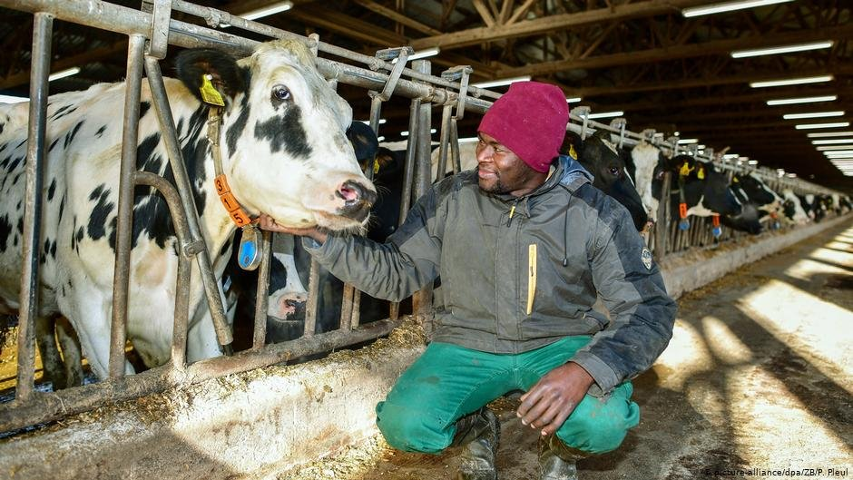 28-year-old refugee Devisme Jackson from Cameroon during a vocational training program in Germany | Photo: Picturea-alliance/dpa/ZB/P.Pleul
