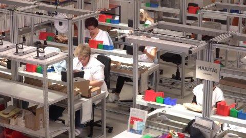 En Hongrie, la colère gronde face à la pénurie de main d'oeuvre. Capture d'écran de France 24.