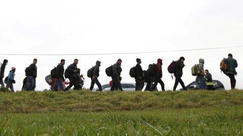 Le Pacte mondial pour les migrations a été ratifié.