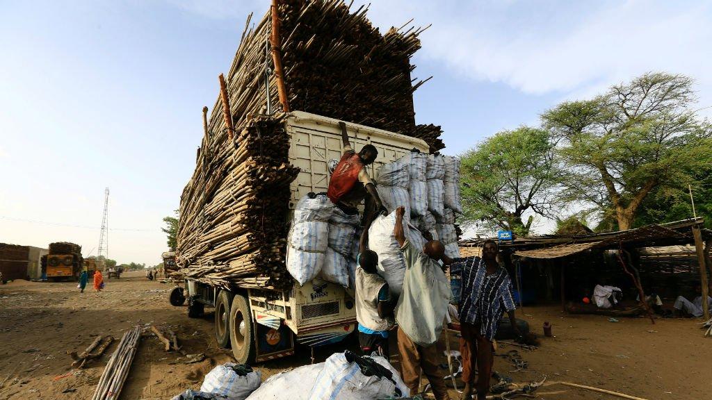 Des travailleurs africains transportant du bois depuis la République centrafricaine jusqu'au Soudan. Crédit : Reuters