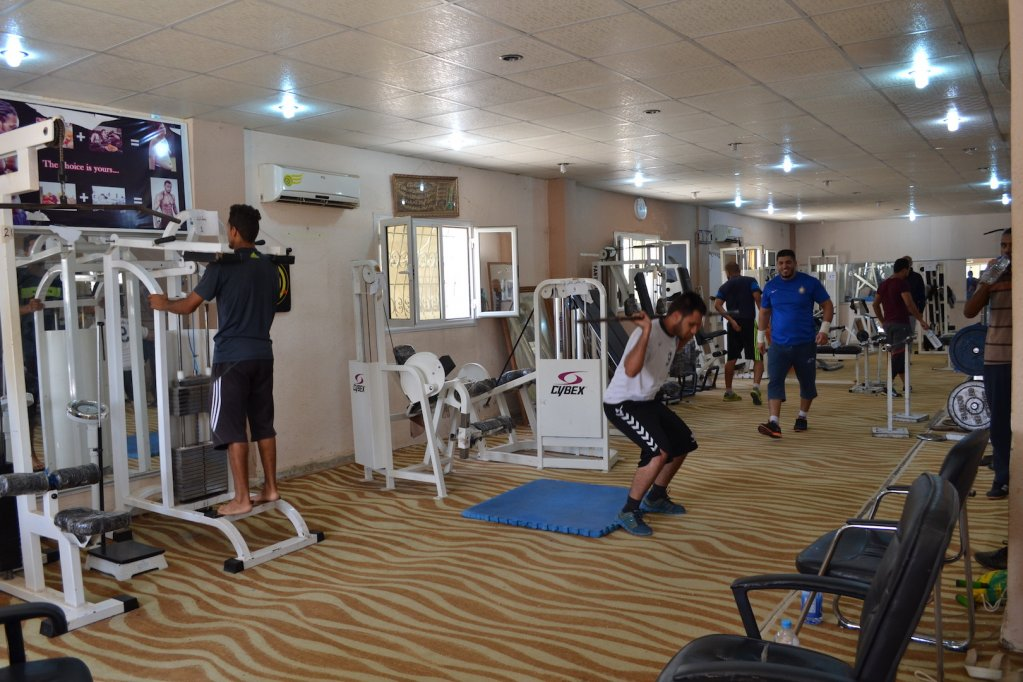Ali Salehs gym