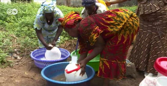 Women poultry farm workers in Conakry