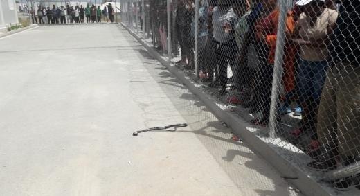 Les rsidents du camp ont trouv un serpent dans une tente et lont tu Ils lont ensuite apport au service de demande dasile comme le symbole de linscurit qui rgne dans le camp Crdit  DR