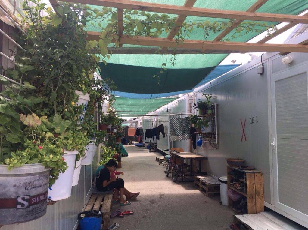 Certains migrants fleurissent leurs fenêtres de container. Crédit : Charlotte Boitiaux