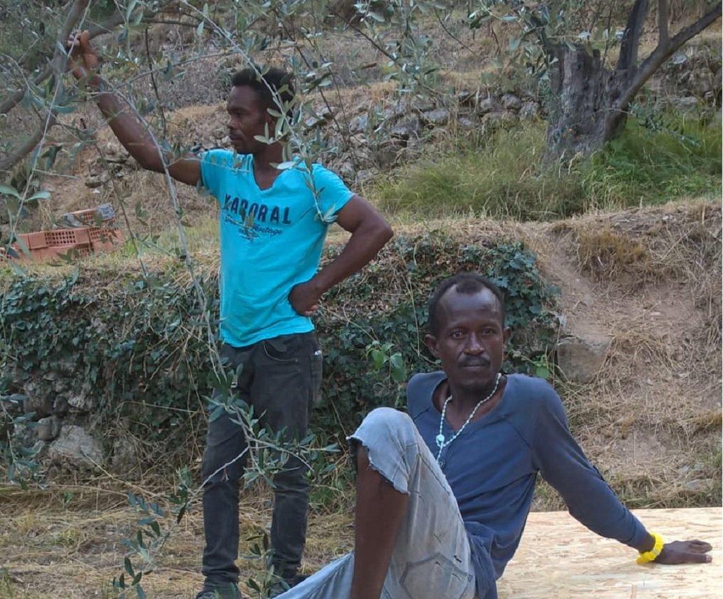مهاجران يأخذان قسطا من الراحة بعد أن أمضوا النهار في بناء قن الدجاج الجديد. مهاجر نيوز