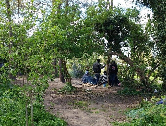 Mardi 24 avril, le campement de migrants situé dans les bois a été démantelé. Crédit : Paul Chiron