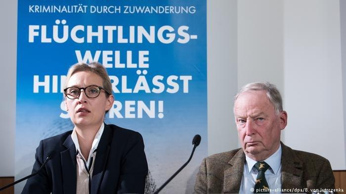 picture-alliance/dpa/B. von Jutrczenka |مرشحا حزب البديل الشعبوي الرئيسيان أليس فايدل وألكسندر غاولاند.
