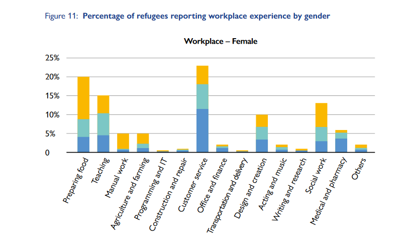 A screenshot from the IOM report on the Link It pilot project showing the skills female refugees had already acquired in the workplace  Credit Screenshot IOM Link It report