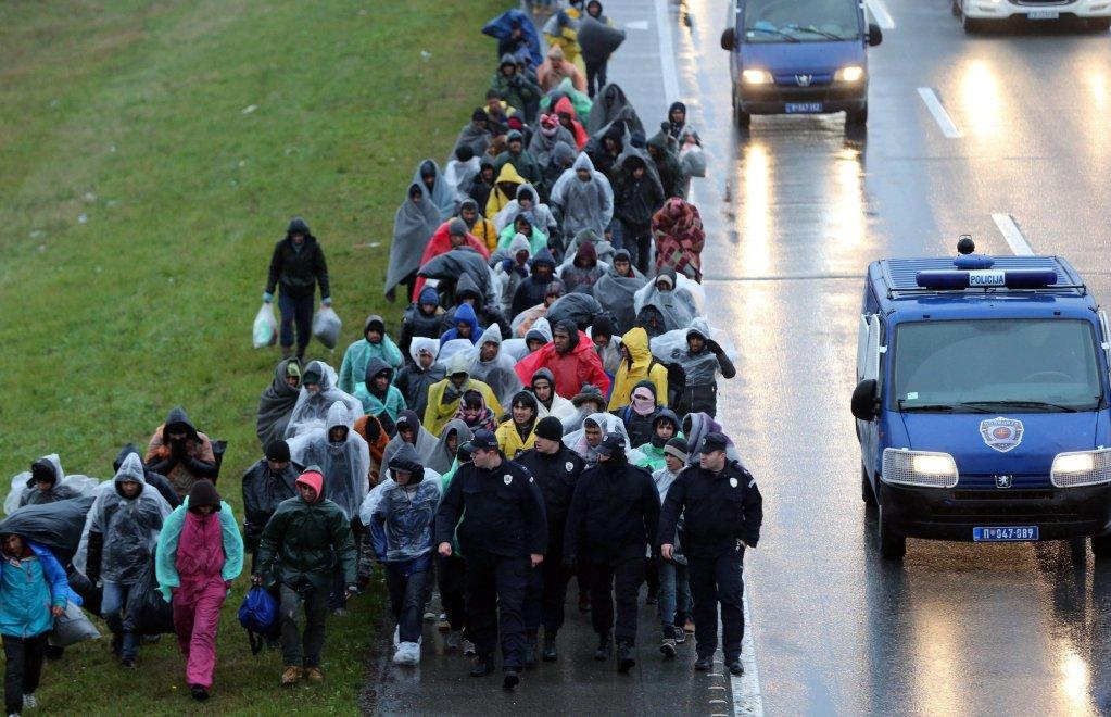 ANSA / مئات المهاجرين في مسيرة من بلغراد باتجاه الحدود الكرواتية، على الطريق السريع بين بلغراد وزغرب قرب مدينة بيشنيتسي، وذلك في 12 نوفمبر/ تشرين الثاني 2016 . المصدر: إي بي أيه/ كوتسا سليمانوفيتش.