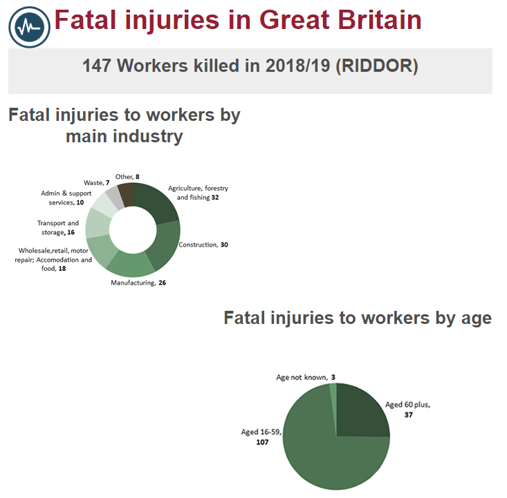 A screenshot from the HSE report looking at fatal injuries at work in the UK for the year 2018-19  Source Screenshot HSE statistics UK