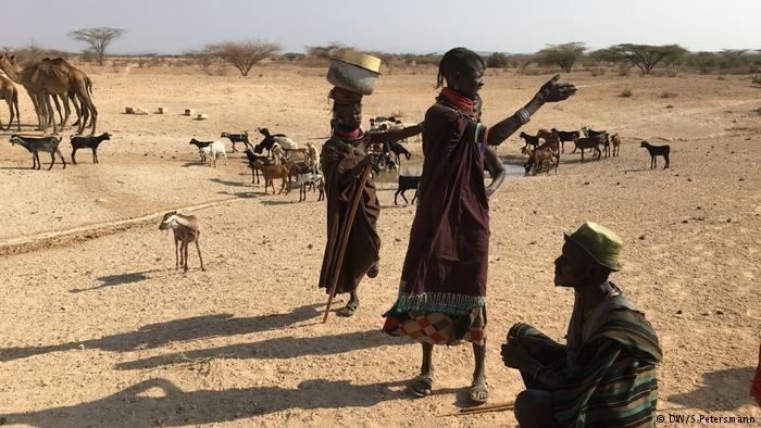 Kampf ums Wasser der Turkana (DW/S.Petersmann)