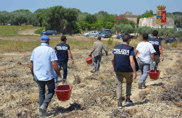 ANSA / عملية للشرطة ضد الكابورالاتو، وهي عصابات تستغل المهاجرين في القطاع الزراعي. المصدر: أنسا