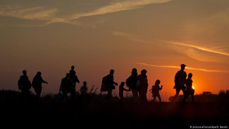 اکثر مهاجر ځان اروپا ته رسولای هم نسي بلکه په خپلو ګاونډي هيوادونو کي پناه لټوي