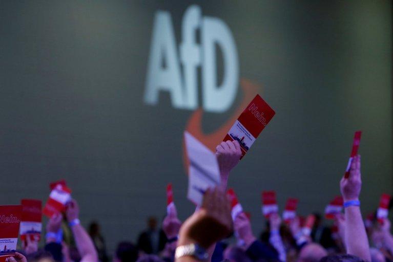 L'AfD ne cesse de progresser depuis sa création en 2013 / Photo: Reuters/Michaela Rehle