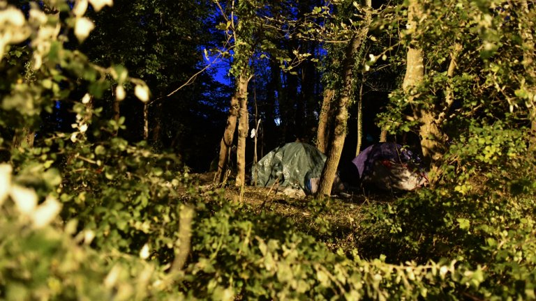 Dozens of tents have been set up under the trees at a migrant camp near the rue des Huttes, in Calais. Credit: Mehdi Chebil