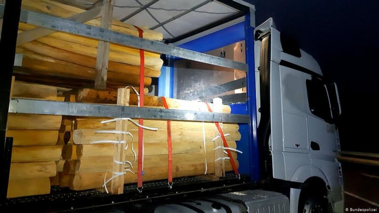 A truck carrying tree trunks that several migrants hid in as they were smuggled across the German border | Photo: Bundespolizei
