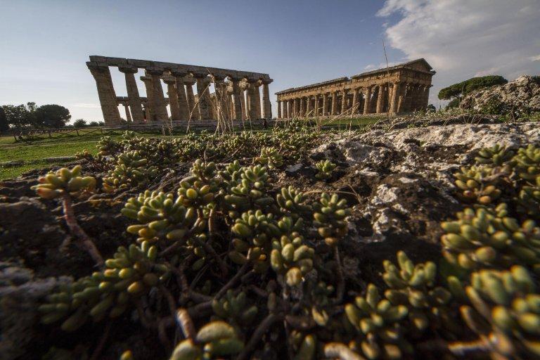 The archaeological park of Paestum | PHOTO: ANSA/CESARE ABBATE