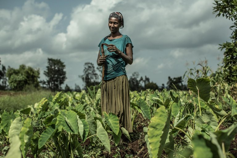 From file: A woman working in a field | Photo: ANSA/OXFAM