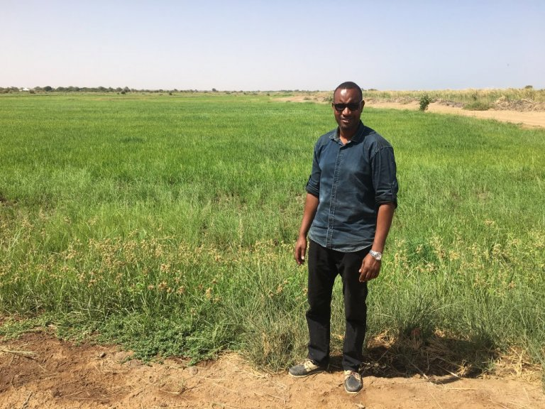 After he returned home from Spain in 2014, Issa started an agricultural business that now has about 15 employees   Photo: Leslie Carretero