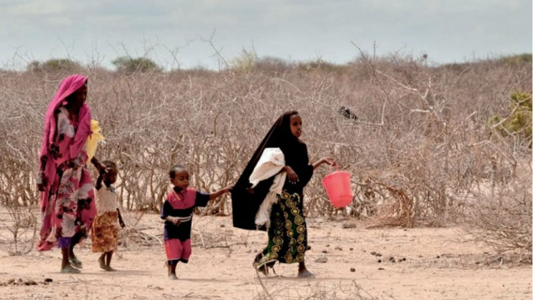 Une sécheresse sévère touche l'est de l'Afrique causant des problèmes de malnutrition et des départs de populations. Crédit : Colin Crowley, Save the Children et Environmental Justice Foundation