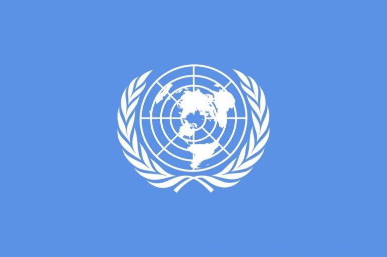 شعار الأمم المتحدة/ أرشيف