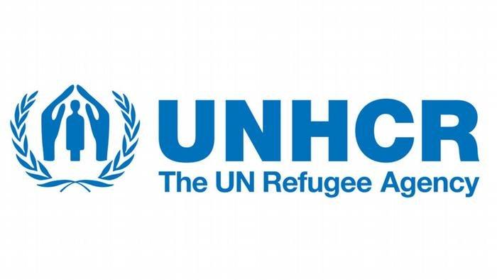 سازمان ملل در همکاری با برنامه آلمانی اکادمیک آلبرت آنشتاین زمینه پیشبرد تحصیلات عالی را برای پناهندگان فراهم می کند.