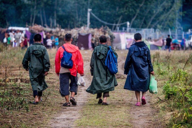 "ansa / مجموعة من المهاجرين متجهين نحو مخيم على الحدود بين صربيا والمجر. الصورة: ""إي بي إيه""/ زولتان بالوخ."