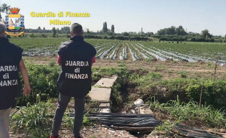 Officers carry out the seizure of a 7.5-million-euro farm as part of an investigation into illegal gangmastering | Photo: ANSA/Gorgonzola finance police